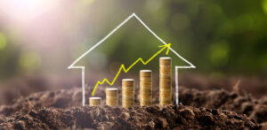 Investment Decisions in Real Estate